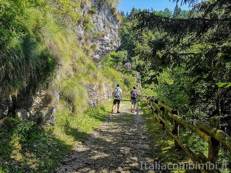 Sentiero dell'Immaginario Alpe Cimbra- prima parte del sentiero