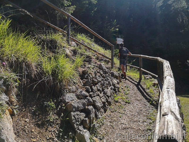 Sentiero dell'Immaginario Alpe Cimbra- sentiero in salita