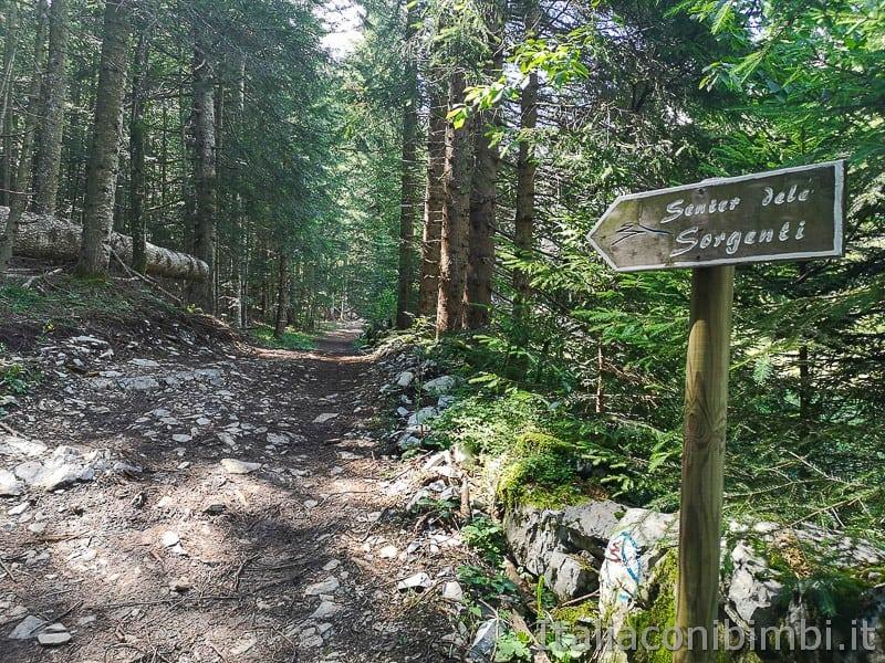 Sentiero delle Sorgenti - Alpe Cimbra- sentiero con le pietre