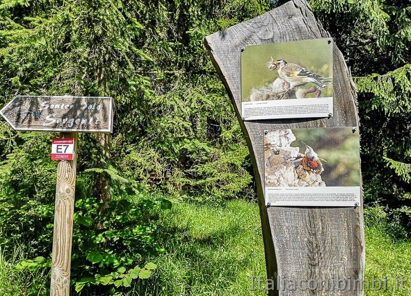Sentiero delle Sorgenti - Alpe Cimbra- tavole con animali