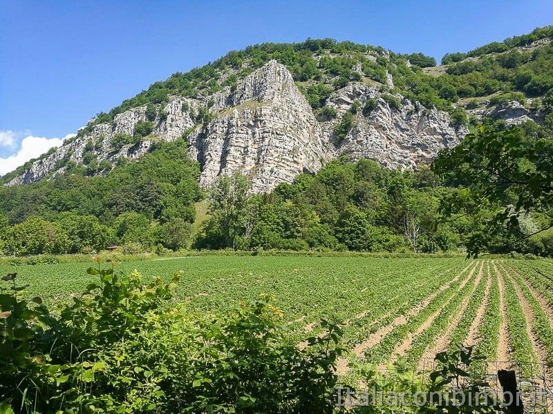 Valle-D'Arano-dalla-ciclabile
