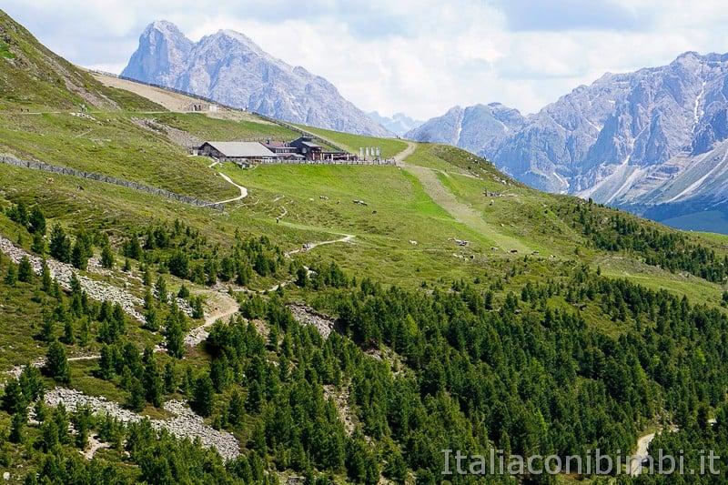 WoodyWalk sulla Plose- panorama dal sentiero 14