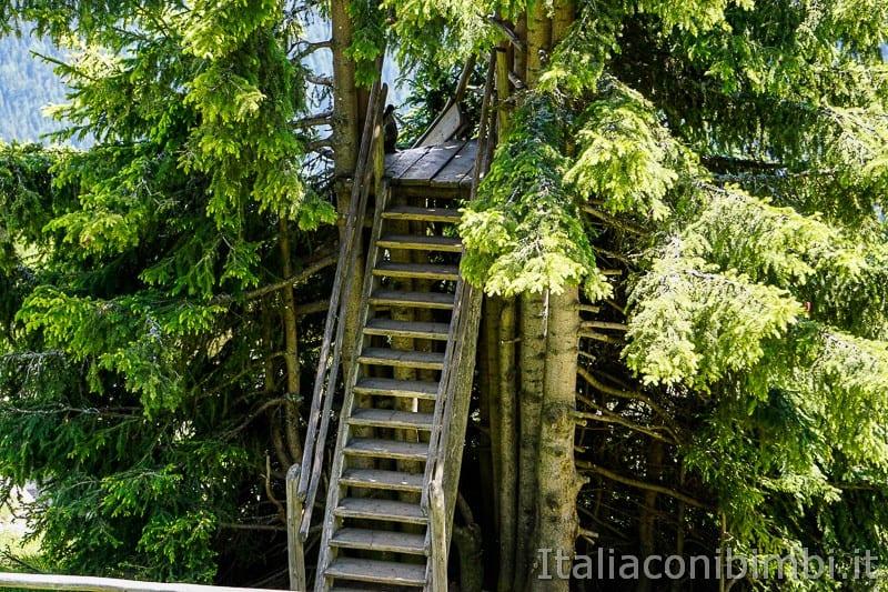 WoodyWalk sulla Plose- scaletta sull'albero per lo scivolo