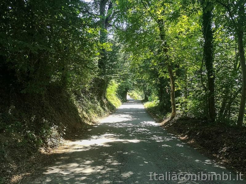 cascatelle di Sarnano- strada per cascata del vecchio mulino