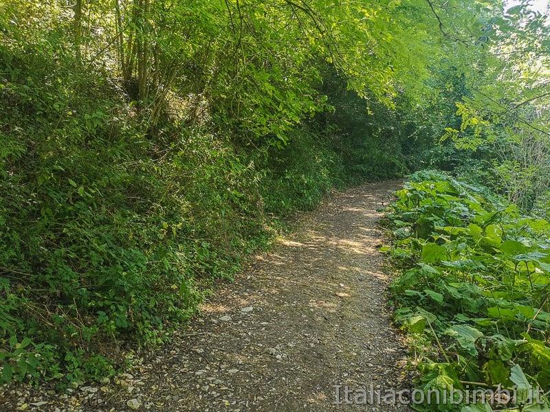 le cascatelle di Sarnano- sentiero per la cascata de lu Vagnato