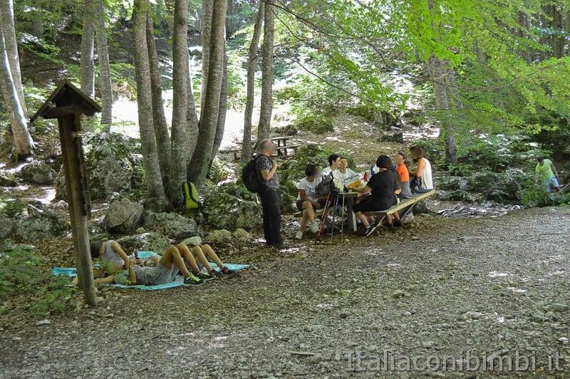 Lama Bianca Majella- area picnic