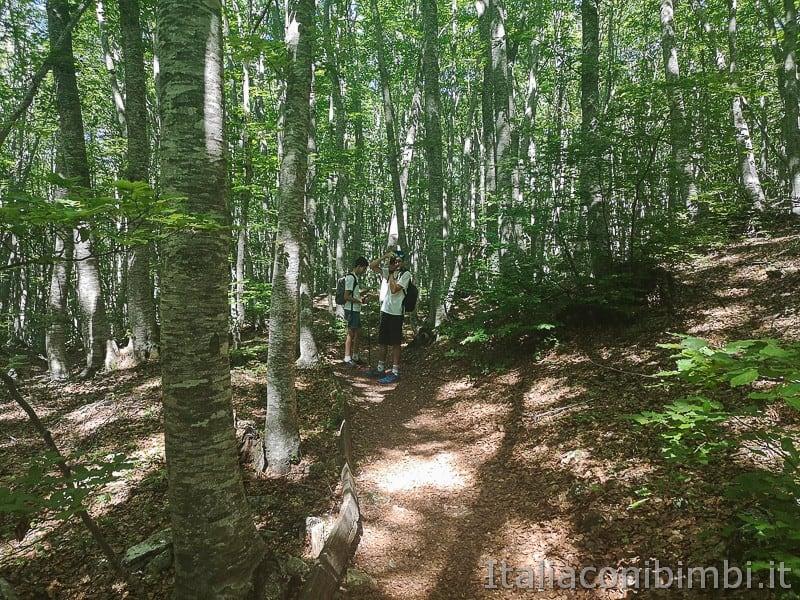 Lama Bianca Majella- ragazzi nel bosco