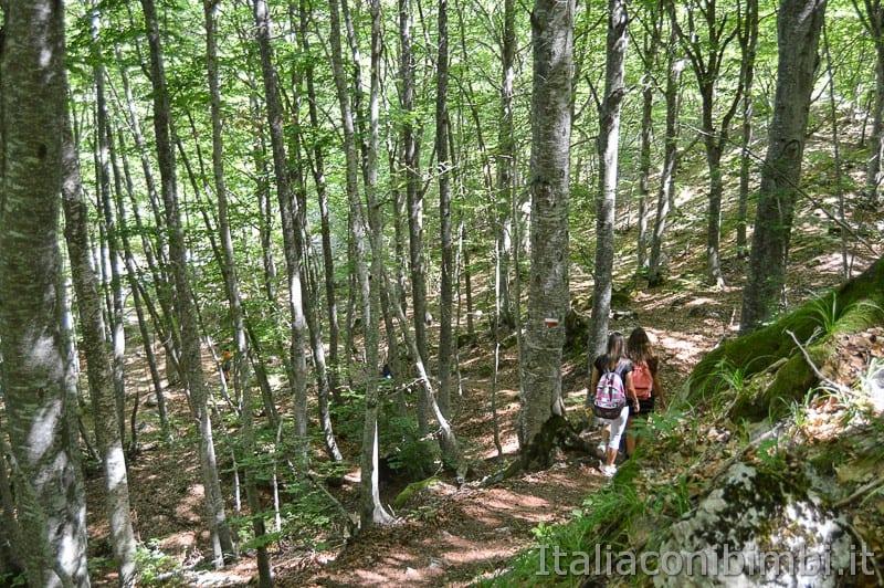 Lama Bianca Majella- sentiero accessibile