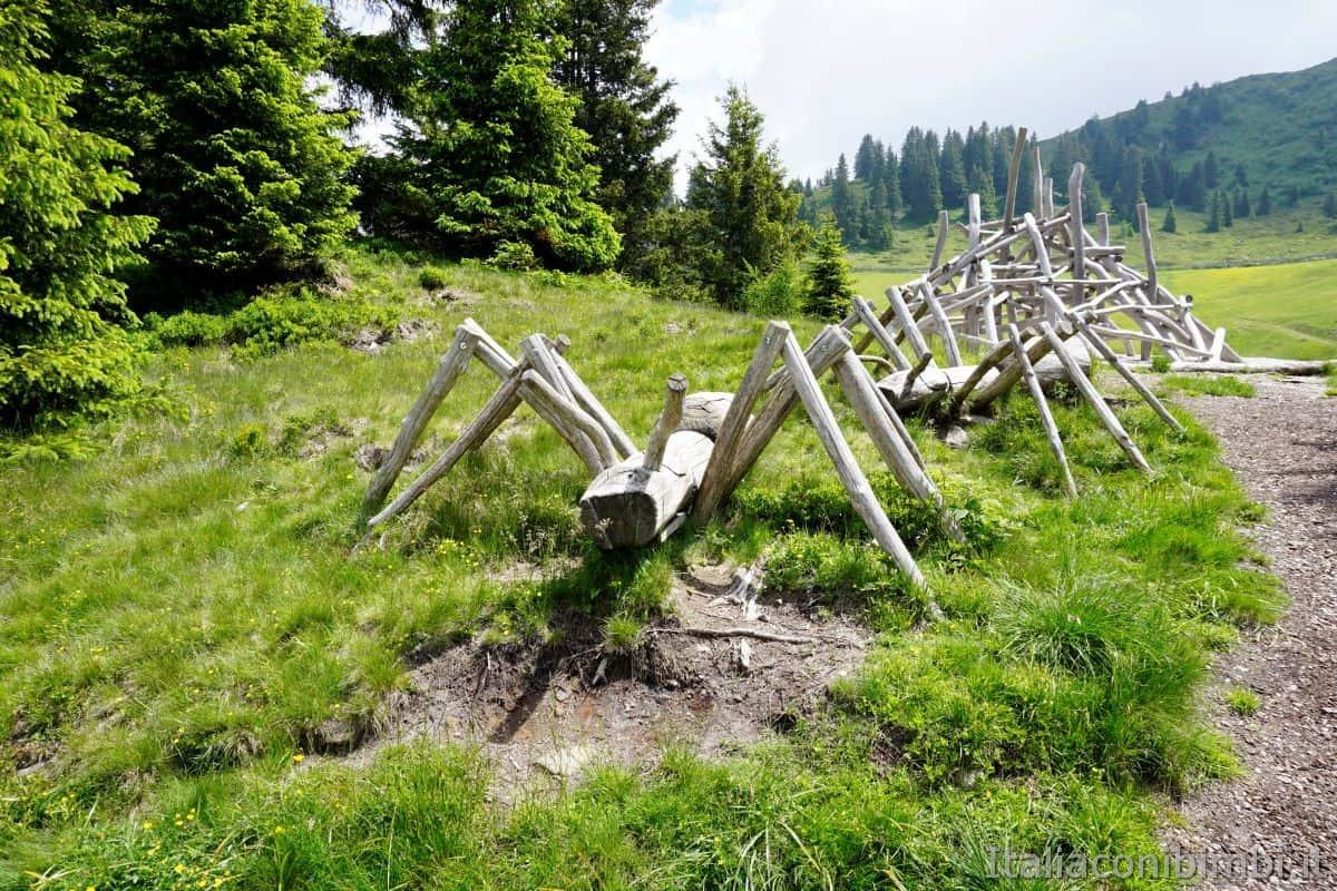Mondo Avventura montagna tronco formiche