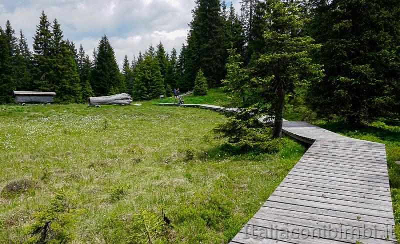 Mondo avventura montagna- passerella di legno