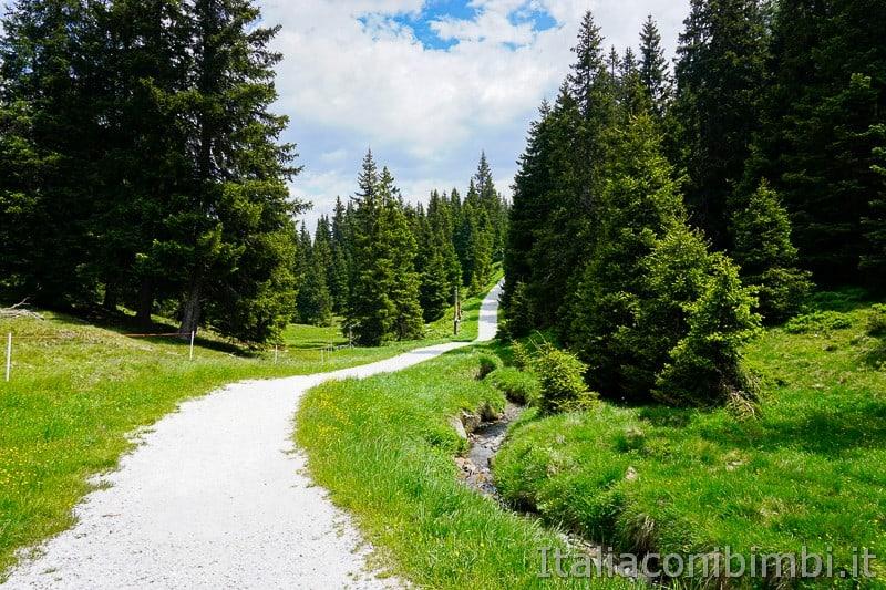 Mondo avventura montagna- sentiero