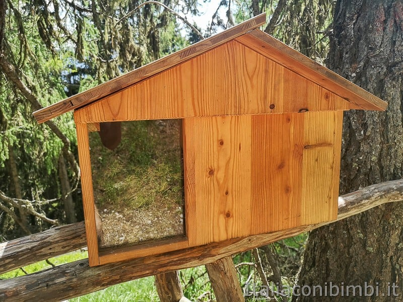 Parco natura Olperl Monte Elmo- casetta per uccelli