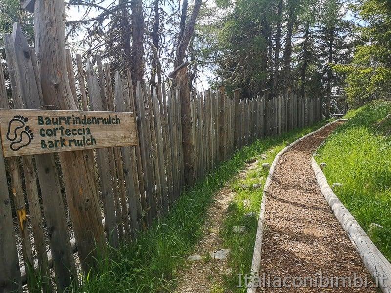 Parco natura Olperl Monte Elmo- percorso a piedi nudi sulla corteccia