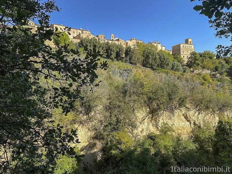 Bosco del Cugnolo-Torre-di-Palme-fosso-Cupo