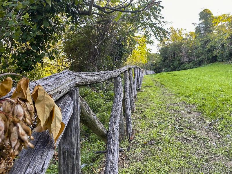 Bosco del Cugnolo-Torre-di-Palme-inizio-del-sentiero