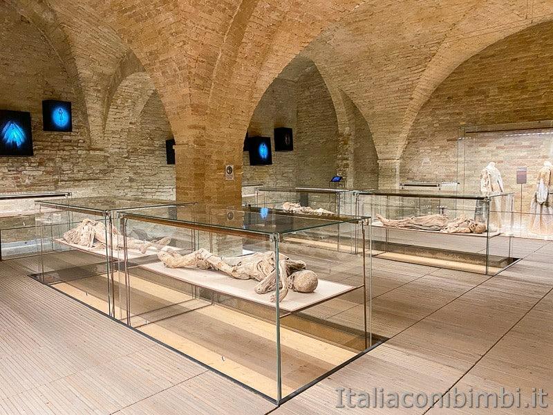 Monsampolo-museo-della-cripta-mummie