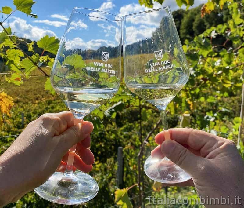 Ripatransone-vini-doc-delle-Marche