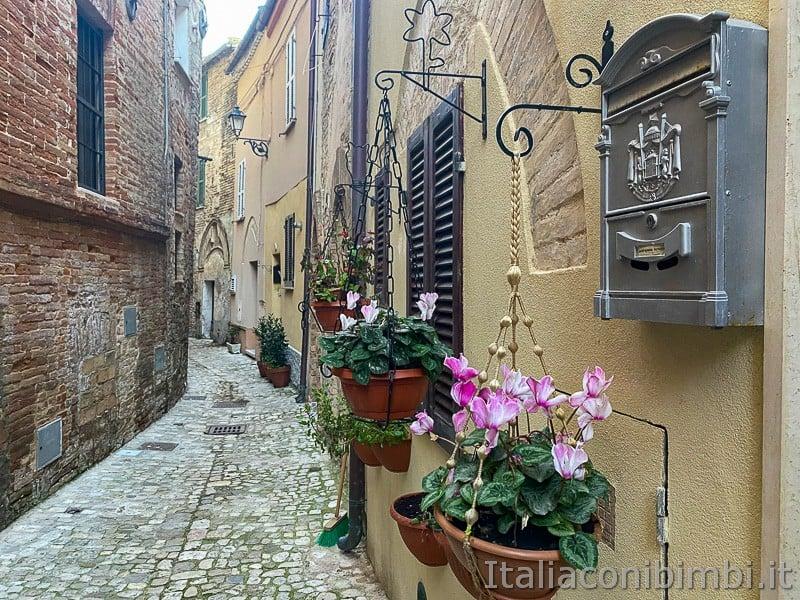 Grottammare- borgo antico fiori