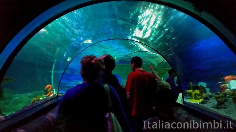 Legoland Germania- Atlantis by Sea Life tunnel