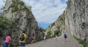 Trieste - strada napoleonica copertina