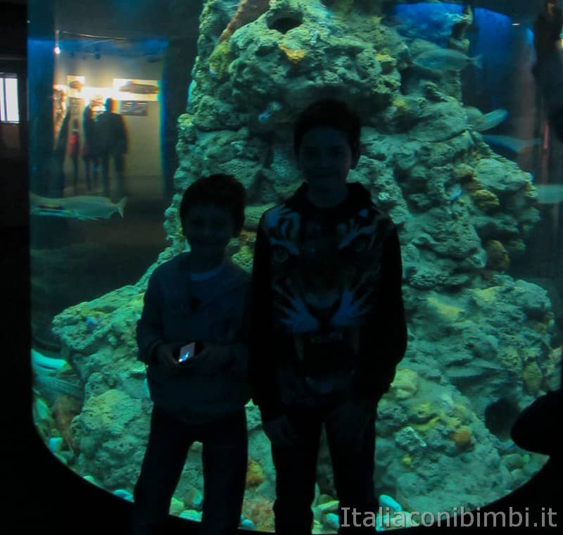 Genova - bambini all'acquario.