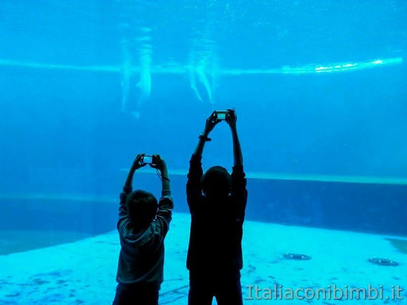 Genova - bambini all'acquario