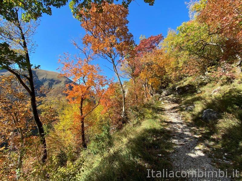 Sentiero natura di Bolognola in autunno