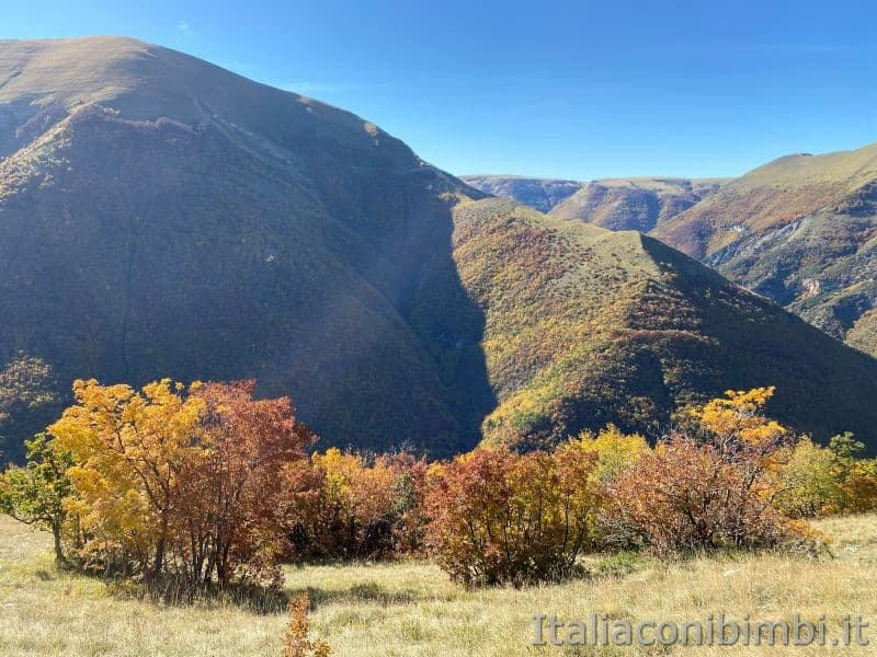 Sentiero natura di Bolognola per Fonte dell'Aquila - montagne