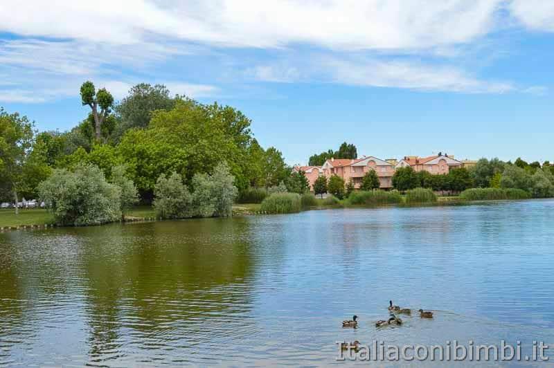 Bellaria Igea Marina - anatre al lago del Gelso