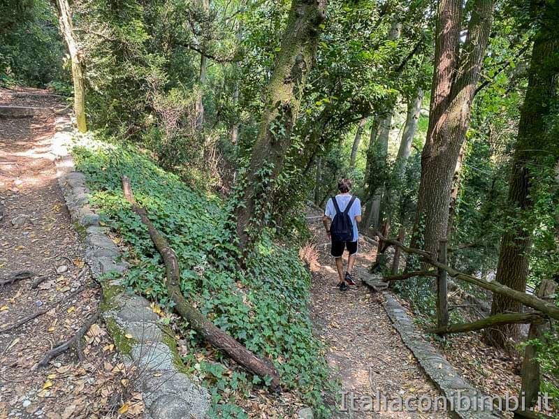Parco Sigurtà - sentieri a zig zag