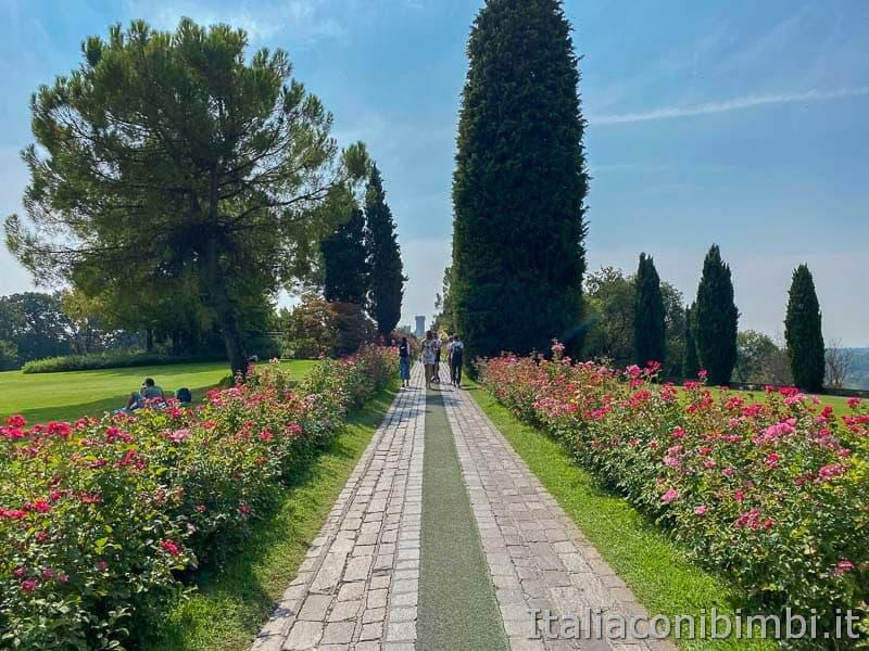 Parco Sigurta - viale delle Rose