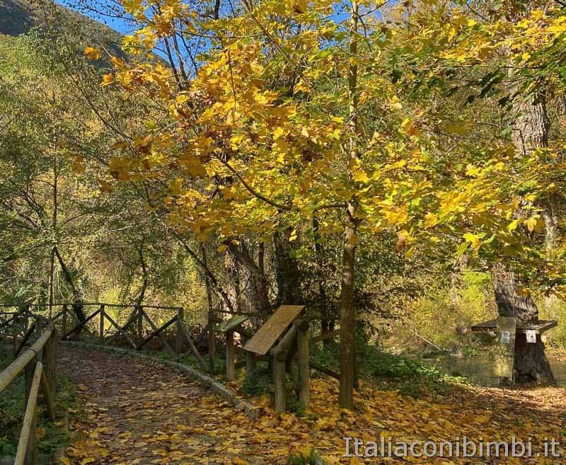 Greenway del fiume Sentino