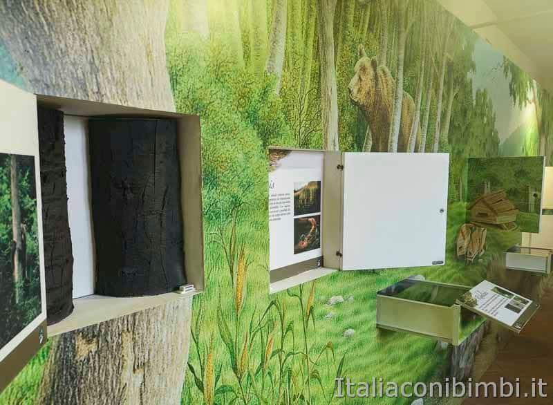 Parco nazionale della Majella - museo dell-orso marsicano interno