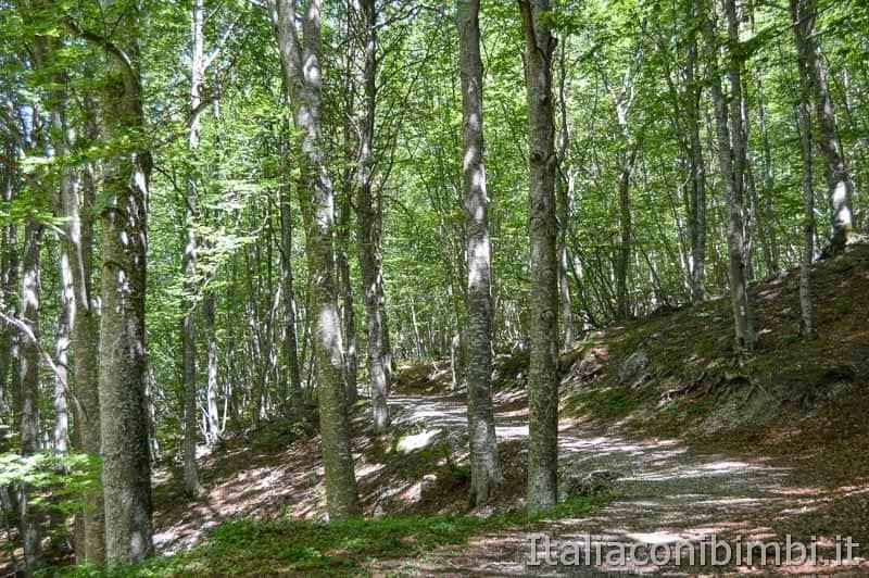 Parco nazionale della Majella - sentiero Lama Bianca