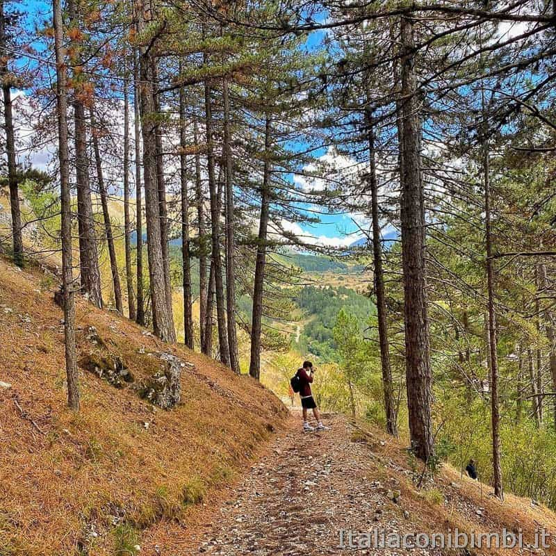 Pescasseroli - sentiero natura Castel Mancino