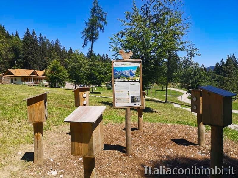 Sarnacli Park - profumi del bosco da annusare