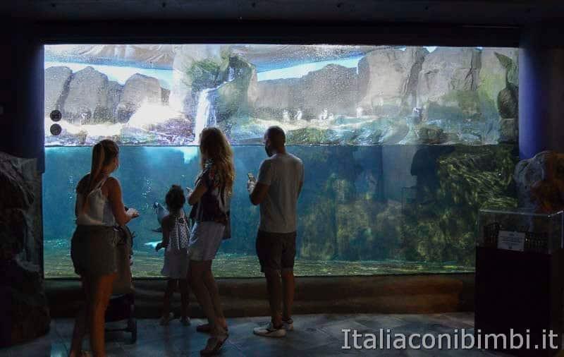 Acquario di Cattolica - bambina che guarda i pesci