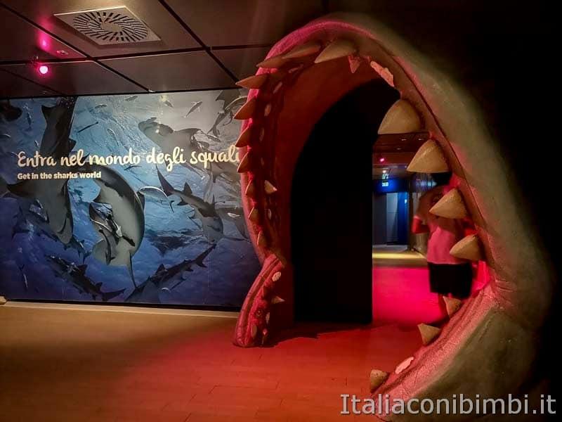 Acquario di Cattolica - ingresso area squali