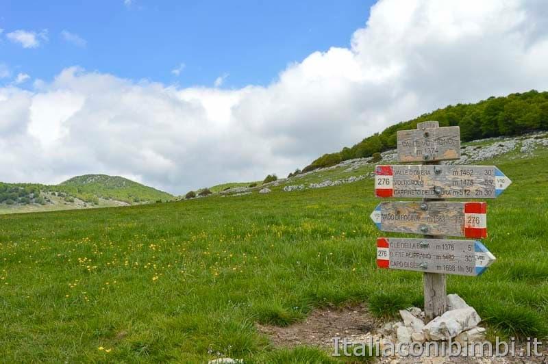 Altopiano del Voltigno - cartelli passeggiate