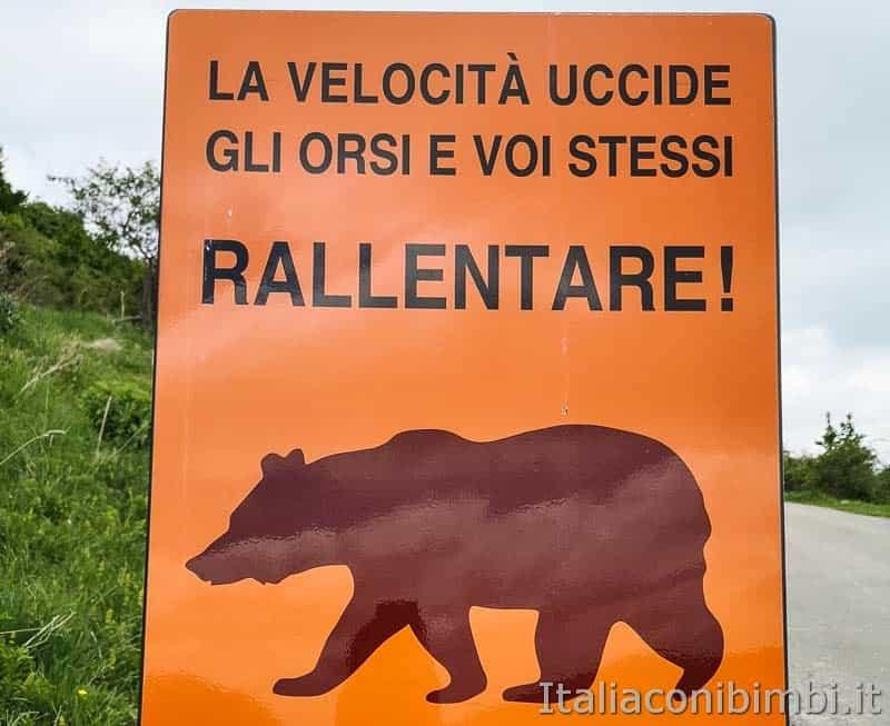 Altopiano del Voltigno - cartello orsi
