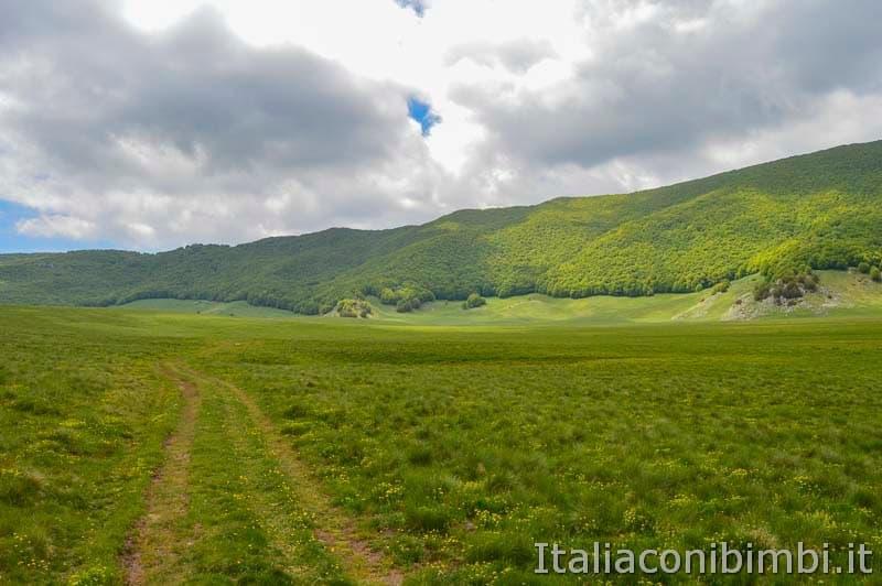 Altopiano del Voltigno - passeggiata