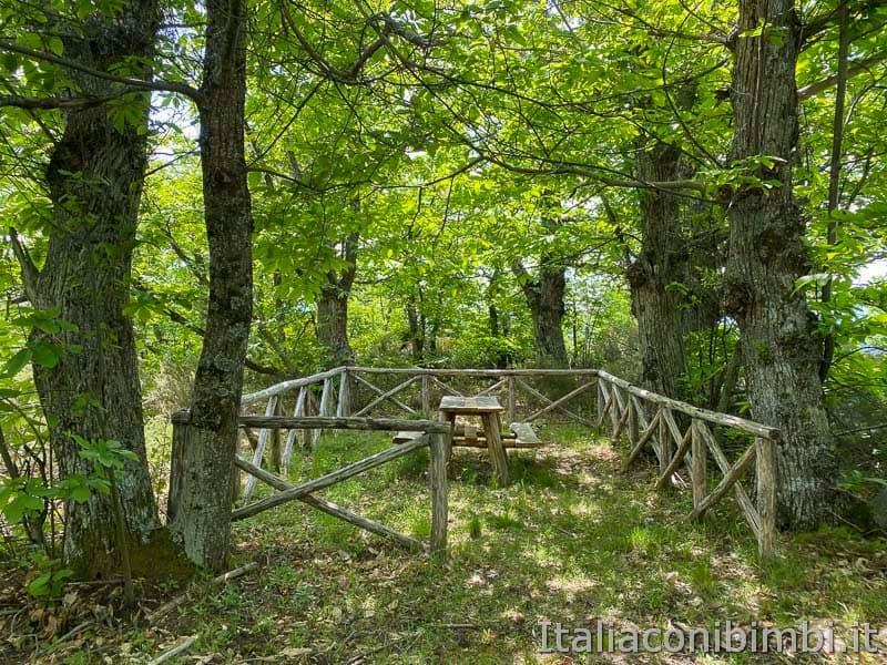 Anello Fleno San Gregorio - area picnic