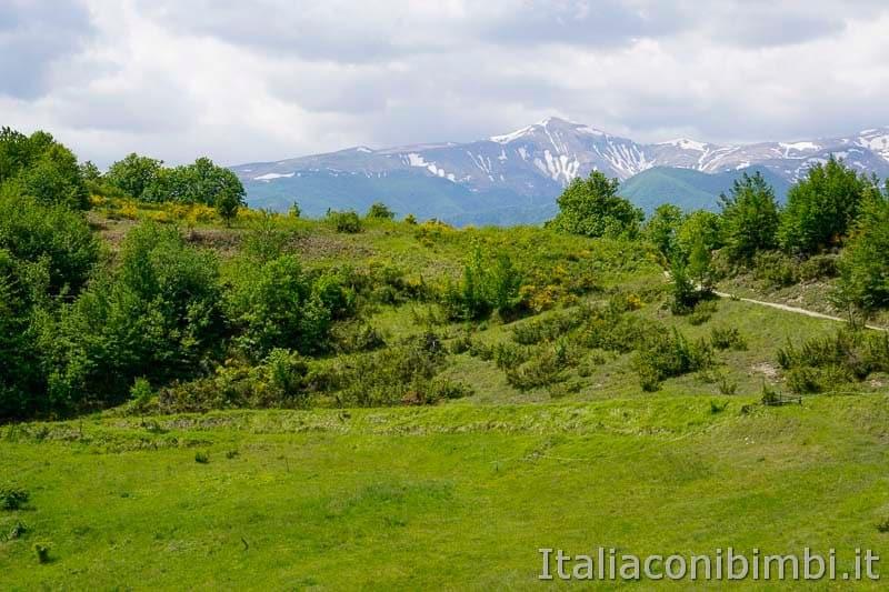 Anello Fleno San Gregorio - panorama sulle montagne