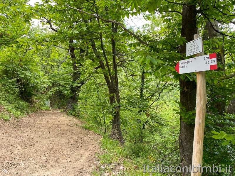 Anello Fleno San Gregorio - primo tratto del sentiero