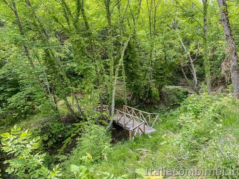 Anello Fleno San Gregorio - vegetazione Ponte Tyeta