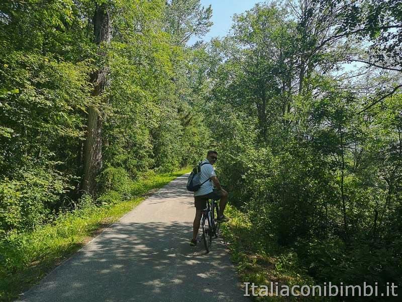 Ciclabile San Candido Lienz - percorso ombreggiato