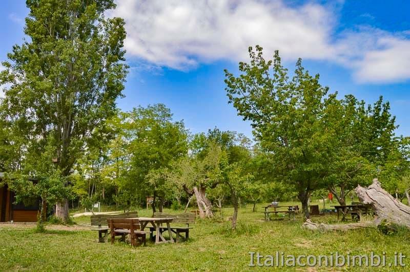 Riserva naturale lago di Penne - area picnic