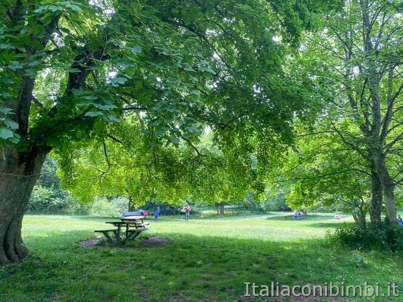 Bosco di Sant'Antonio - area picnic