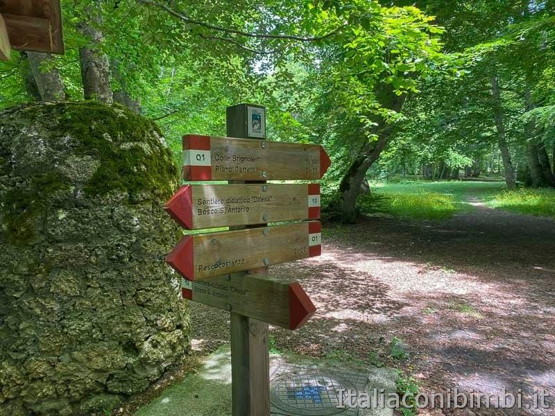 Bosco di Sant'Antonio - cartelli passeggiate