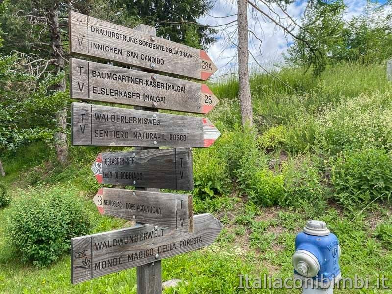 Mondo Magico della Foresta - Dobbiaco - cartelli sentieri